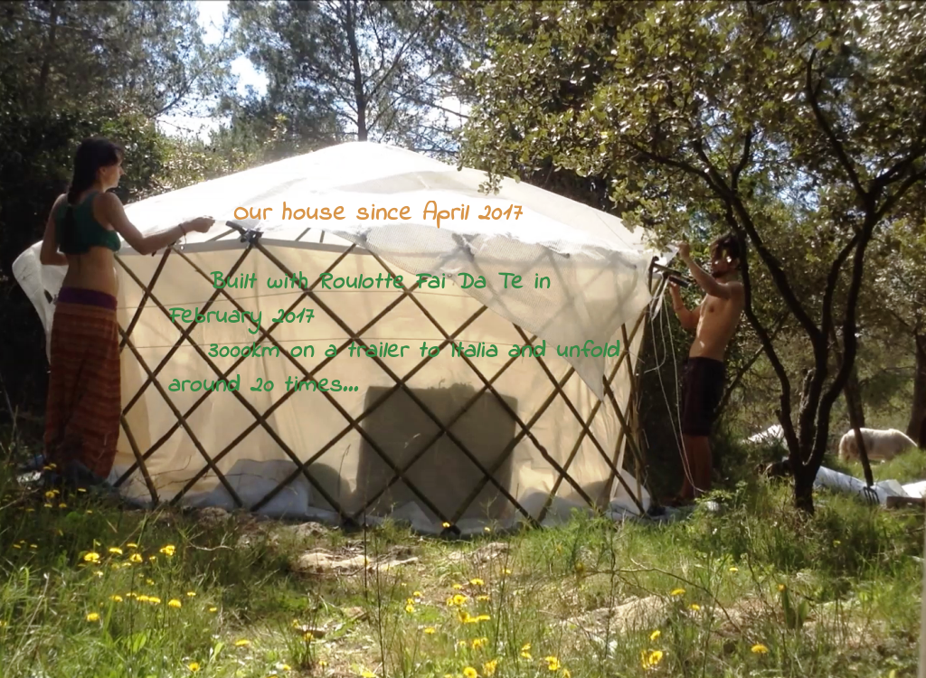 Our story's Flex Yurt